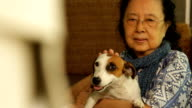 Asian senior woman sitting with her dog video