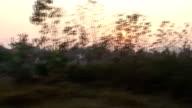 Asian Train video