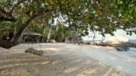 Asian tropical beach paradise in Thailand video