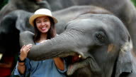 Asian women enjoy elephant, Slow motion video