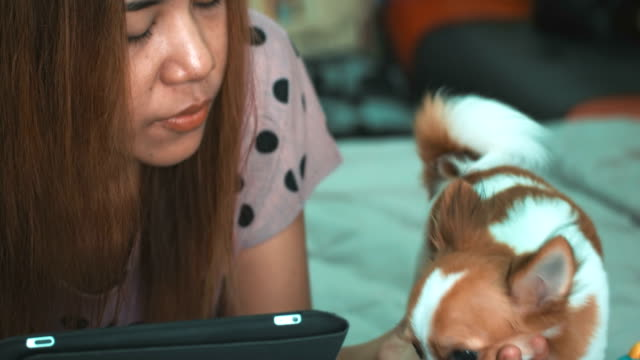 Asian women using digital tablet with her Dog video