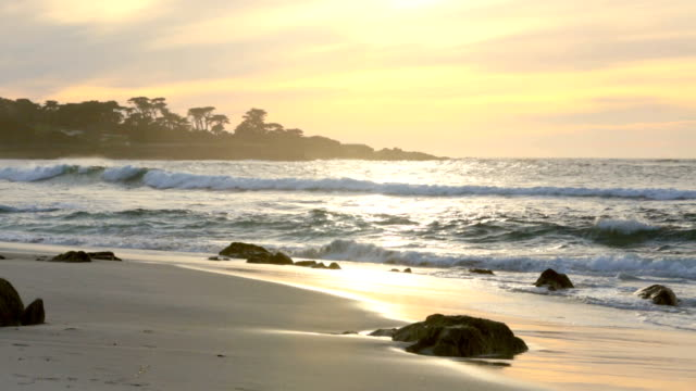 Asilomar beach in Monterey, California video