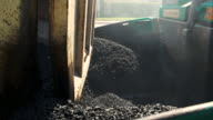 Asphalt pouring from truck. video