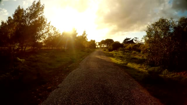 Asphalt road among young spring green outskirts of Famagusta Salamis video