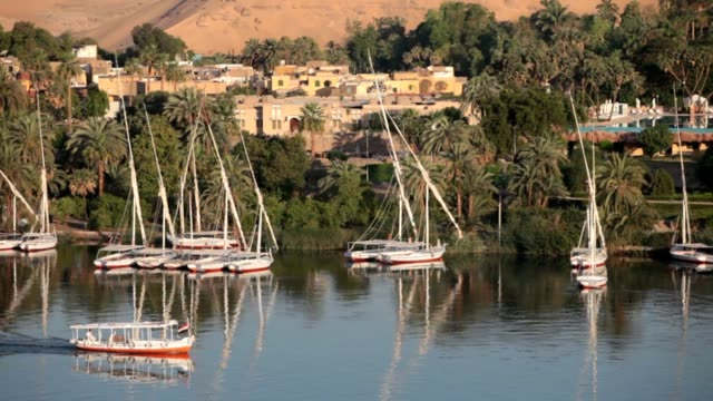 Aswan video