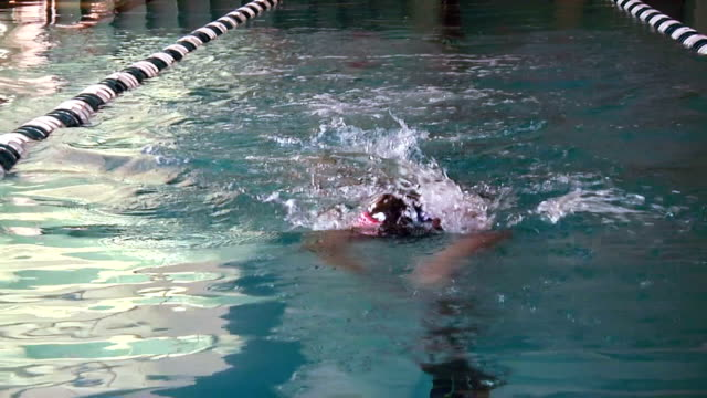 Athlete Swimmer In Pool video