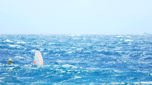 Athletic man windsurfing in the ocean, active lifestyle, popular extreme sport video