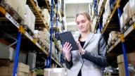 Attractive manager working on tablet in warehouse video