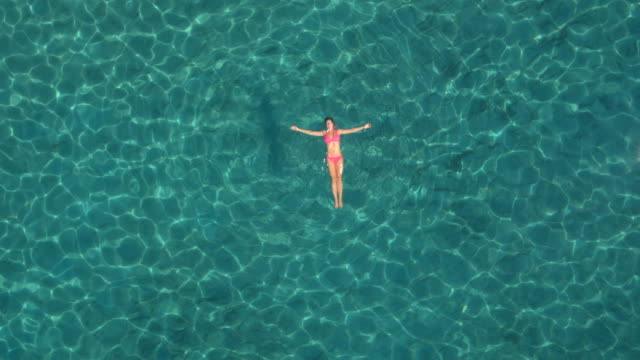 AERIAL: Attractive young woman swimming starfish float in crystal clear ocean video