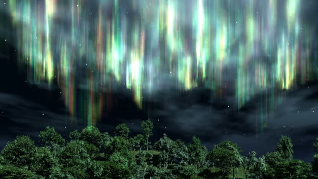 Aurora over the Trees video