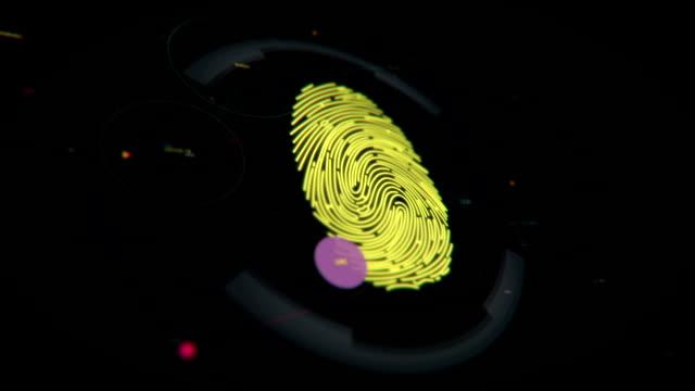 Authorization process, fingerprint scan, access granted, biometric verification video
