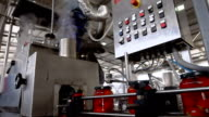 Automatic Line for Processing and Canning Vegetables . Preserving Tomatoes video