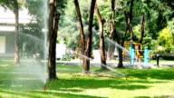 Automatic sprinkler watering video