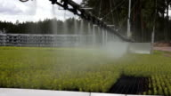 Automatic watering equipment video