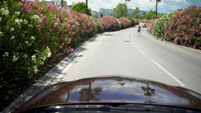 Automobile driving along beautiful street surrounded by bushes in resort town video
