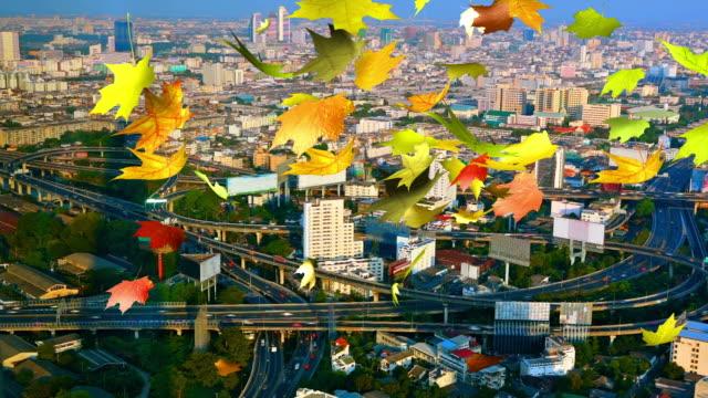 Autumn city video