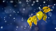Autumn first snow - loopable video