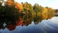 Autumn forest. Lake. Autumn Landscape. 4K. video