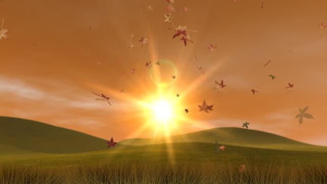 Autumn Hills, Leaves & Sunset (HD Loop) video