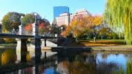 Autumn in Boston video