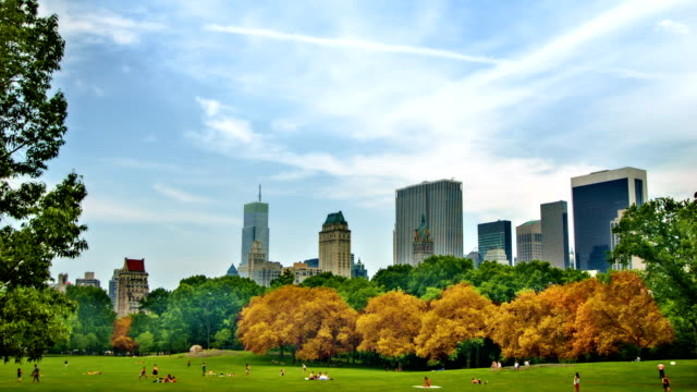 Autumn in central park video