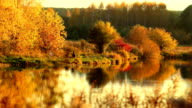Autumn in colors video