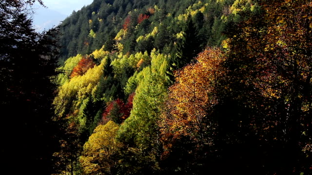 Autumn in the mountains video