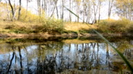 Autumn Landscape with a lake video