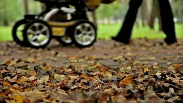 Autumn leafs, buggy. Close up, horizontal slider shot video