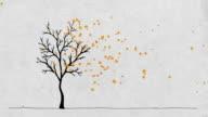 Autumn Maple Tree + alpha chanel video