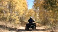 Autumn mountain trail ATV video