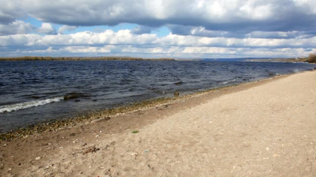 Autumn nature scene, sandy bank of river video