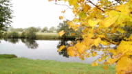 Autumn On The River Dee video