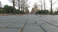 Autumn Park fallen leaves on road video
