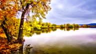 Autumn pond. video
