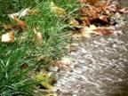 Autumn Rain video
