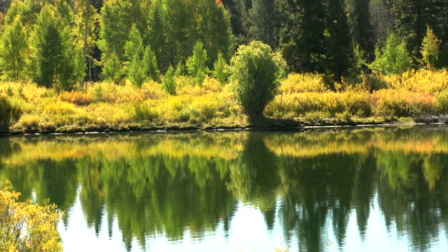 Autumn reflections in Wyoming video