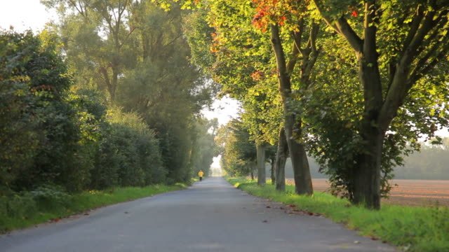 CRANE UP: Autumn Road video