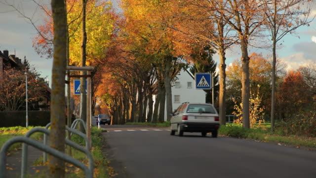 (CRANE UP) Autumn Road video
