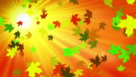 Autumn sky video