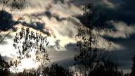 autumn sunset video