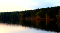 Autumn trees over the water video