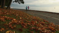 Autumn Walk on the Stanley Park Seawall video