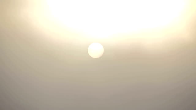 Autumnal Sunrise Through The Morning Mist. video