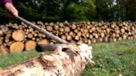Axe Chopping Wood Log video