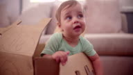 Baby boy playing in a cardboard box video