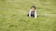 Baby boy walking in the Park video