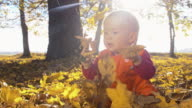 SLO MO Baby playing with autumn leaves video