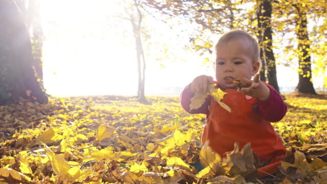 SLO MO Baby playing with dry autumn leaves video