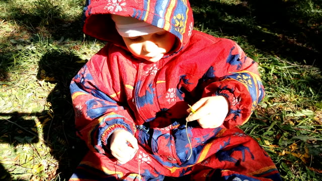 Baby playing with flowers sitting on grass video